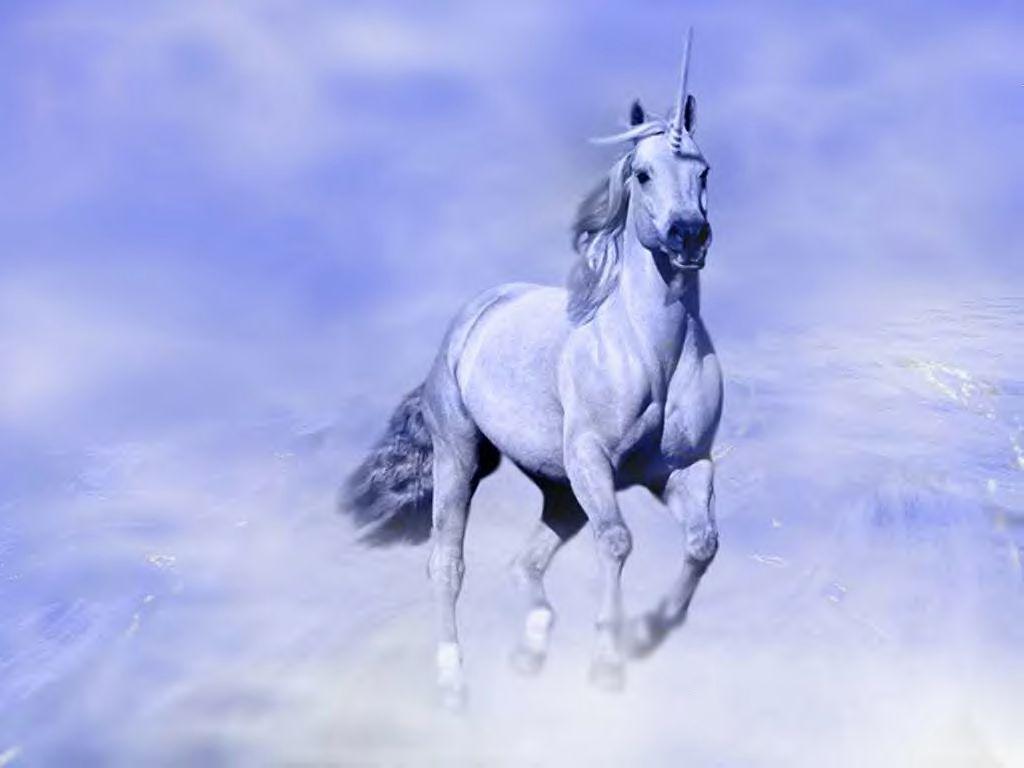 Unicorns And Winged Horses